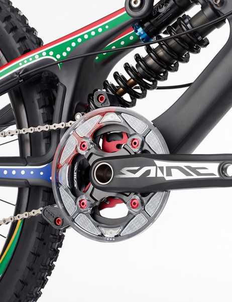 Greg Minnaar V10 replica: 165mm Shimano Saint cranks with a 36T front chainring protected by a Gamut P38 chainguide