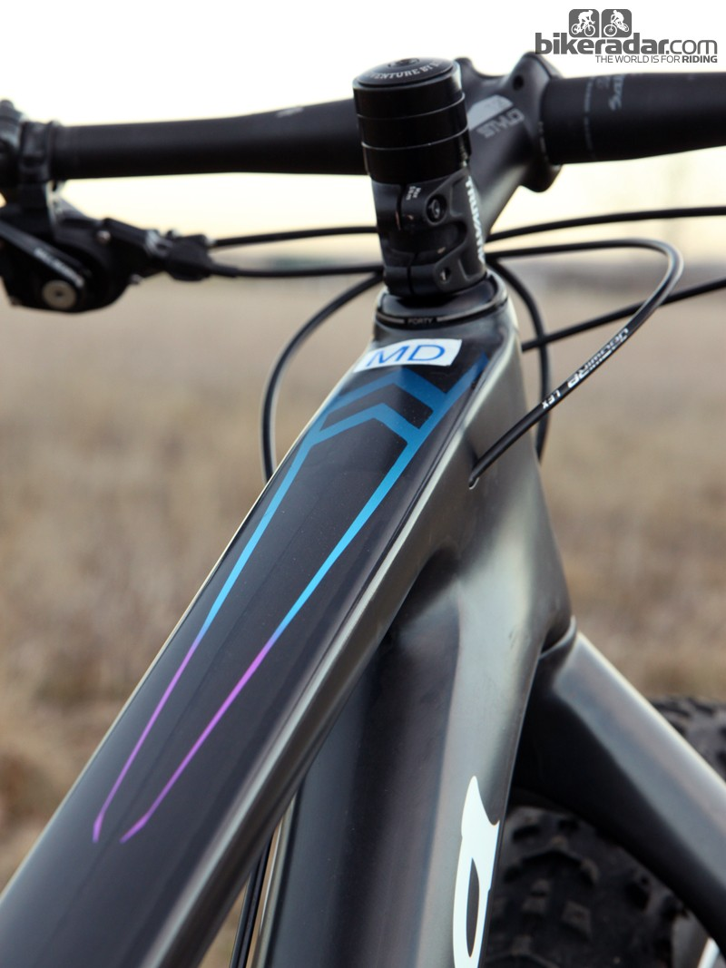 There's just a smidgeon of color on the Salsa Beargrease frame but it's used to good effect