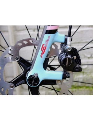 The left side of the fork with caliper mount, captive insert and 160mm disc rotor