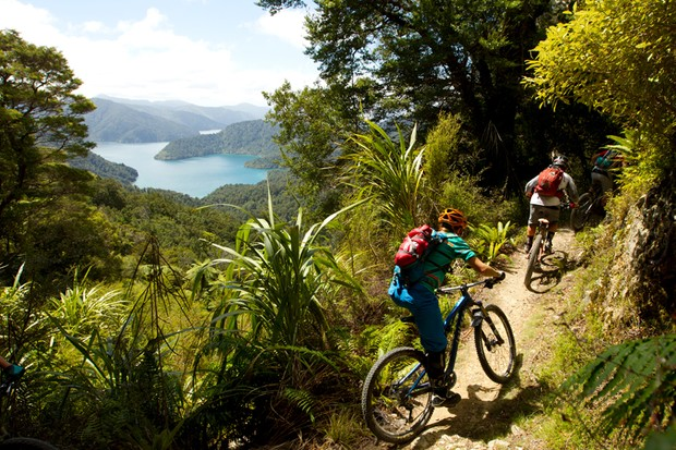 Nydia Bay Track overlooking the Pelorus Sound
