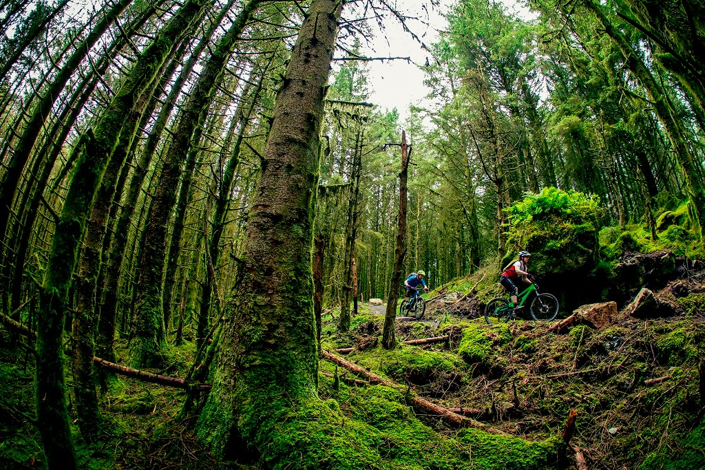 There's lush riding at five trail centres in Northern Ireland