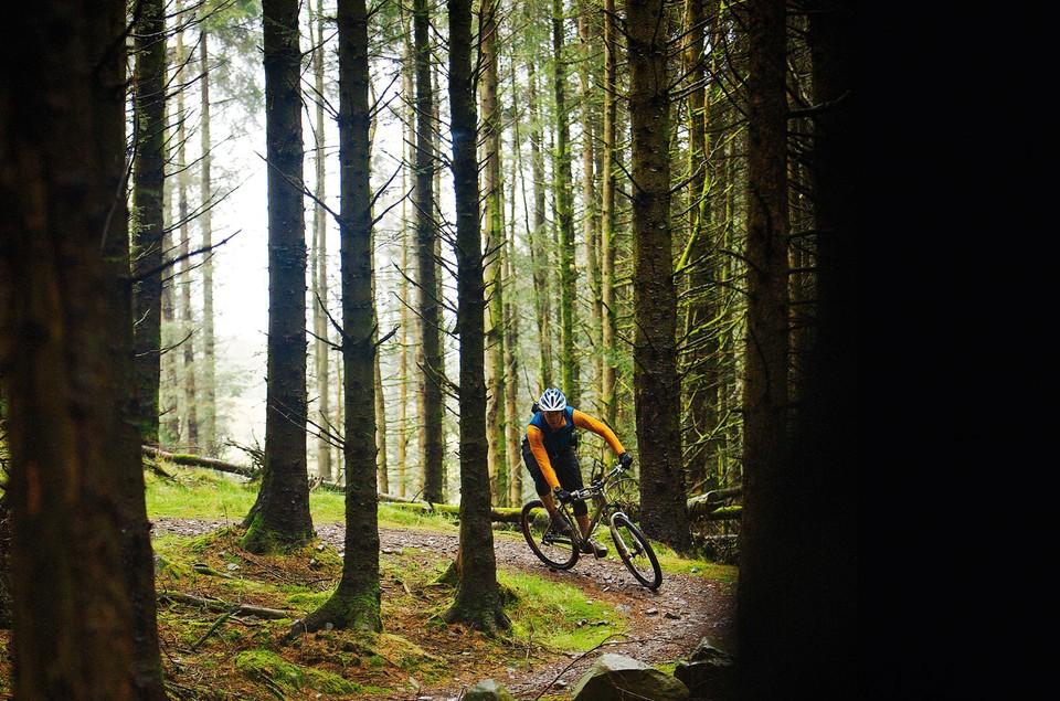 2ff4215736b Best trail centres in Scotland - BikeRadar