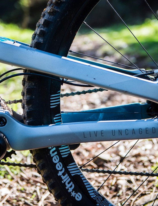 All the pivots can be serviced from one side of the bike (except the drive-side horst-link pivot)