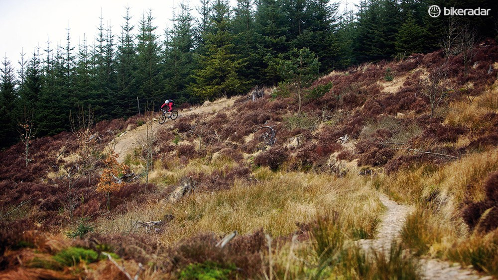 Kielder Forest is massive, and there are trails aplenty to play on in it