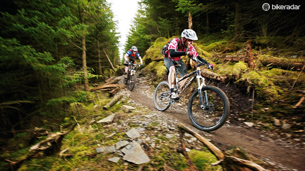 Whinlatter is another Lake District gem