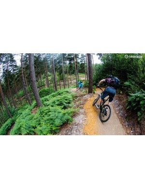 Swinley Forest makes the most of it's limited elevation with some incredibly fun, flowing trails