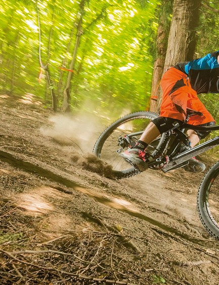 If you're buying a new bike from a major brand this year, there's a very high chance it will be 650b