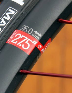 Mountain bike wheels vary in terms of diameter and width