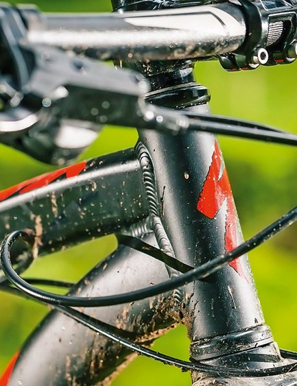 The Hardrock's narrow head tube won't accommodate a tapered steerer