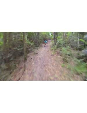 The Bump Track is a raw firetrail that descends 6km into Port Douglas