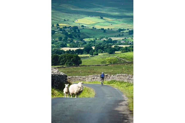 Yorkshire's 2014 Tour de France stages proved interesting to the locals