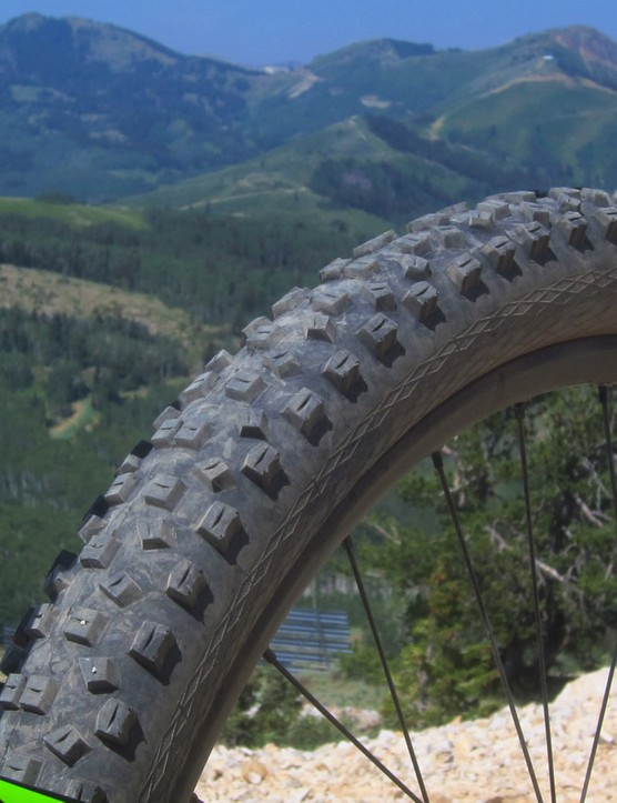 The stock Schwalbe Hans Dampfs have excellent grip and are very forgiving once they do let go. We would have liked to see a less aggressive tire out back to more easily whip around corners
