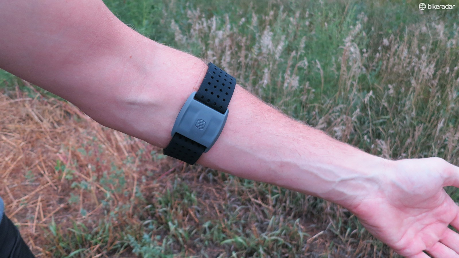 If you're not fond of chest straps, the Scosche Rhythm+ forearm monitor may work for you