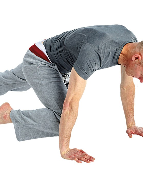The mountain climber works your trunk, hips and legs. It is a great cardio workout