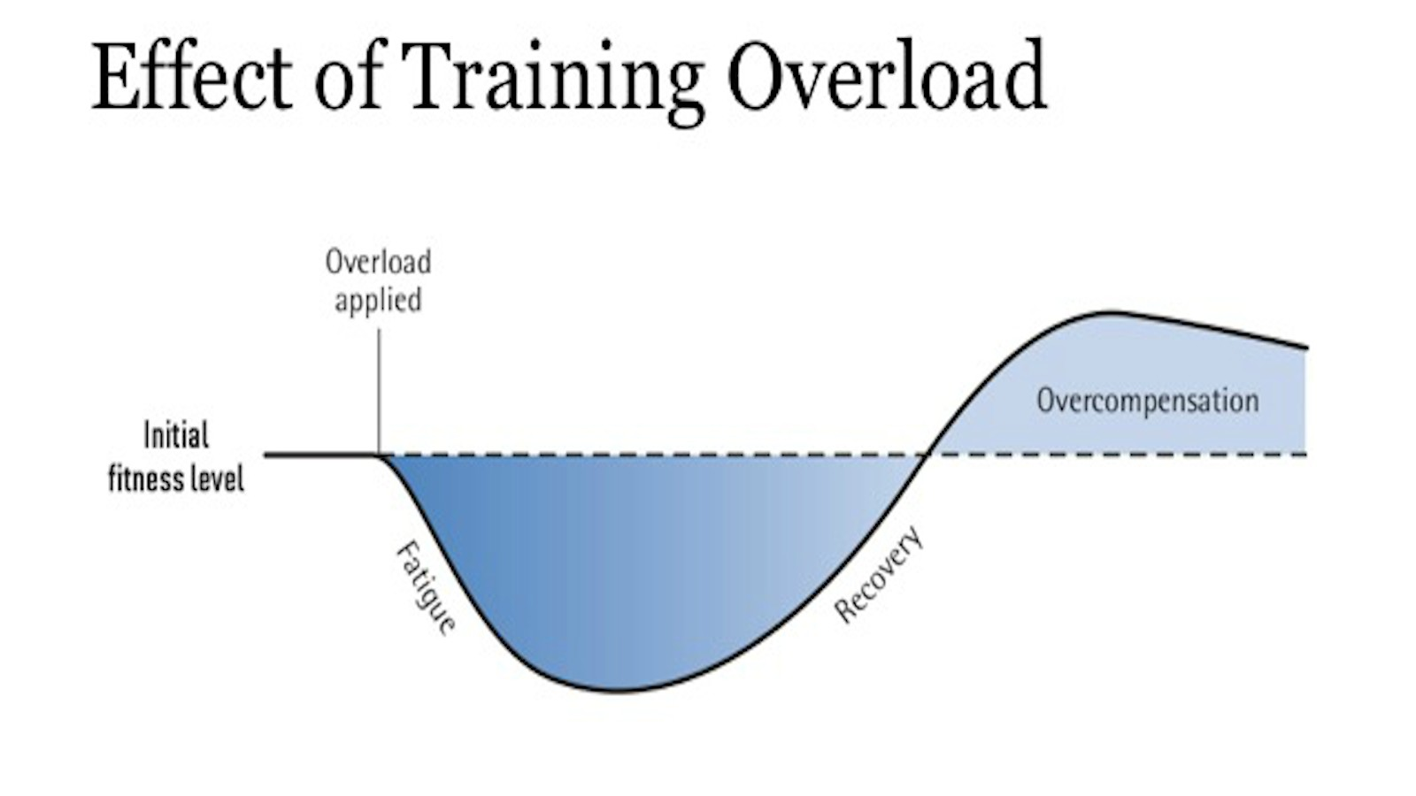 """""""This diagram shows the response to training load, how it affects fitness through fatigue, through which recovery then elicits a positive reaction resulting in a greater level of fitness"""""""