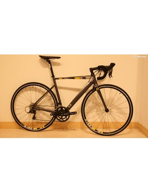 13 Bikes Intrinsic Beta