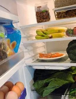 An exemplary fridge