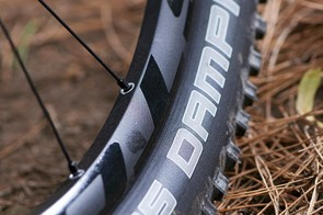 Easton rims are paired with high volume Hans Dampf rubber