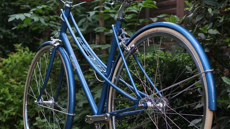 Goede Satoma Cycles Mackintosh inspired custom mixte - BikeRadar CM-61