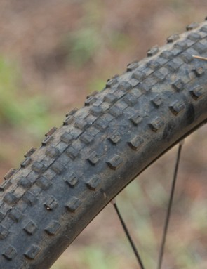 The Bontrager XR1 provides a low block tread for respectable grip in dry conditions
