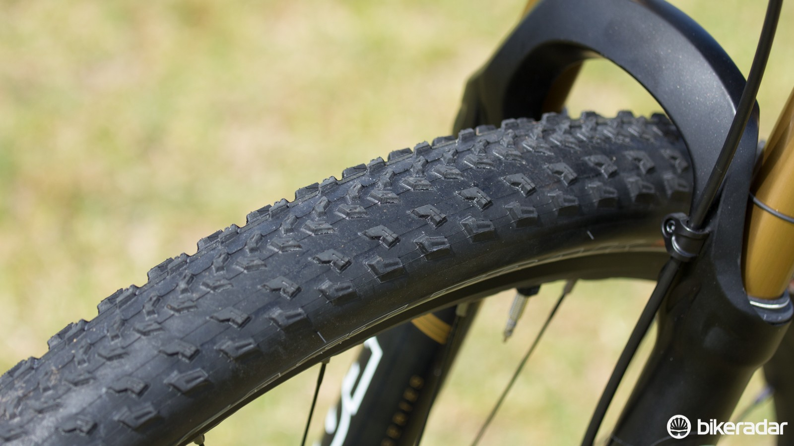 Specialized's 2015 Fast Trak Control 2.2in tyres, set up tubeless. We had issues with getting a properly reliable seal on these tyres during the race weekend