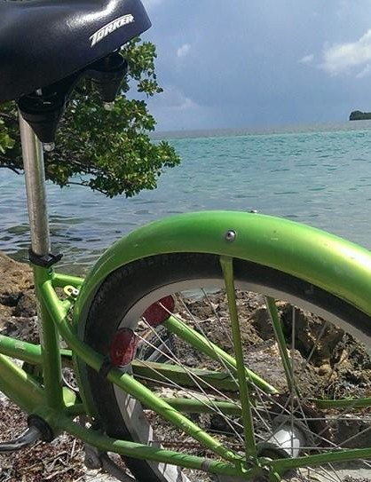 Garry Templeman's beach cruiser in sunny Florida Keys
