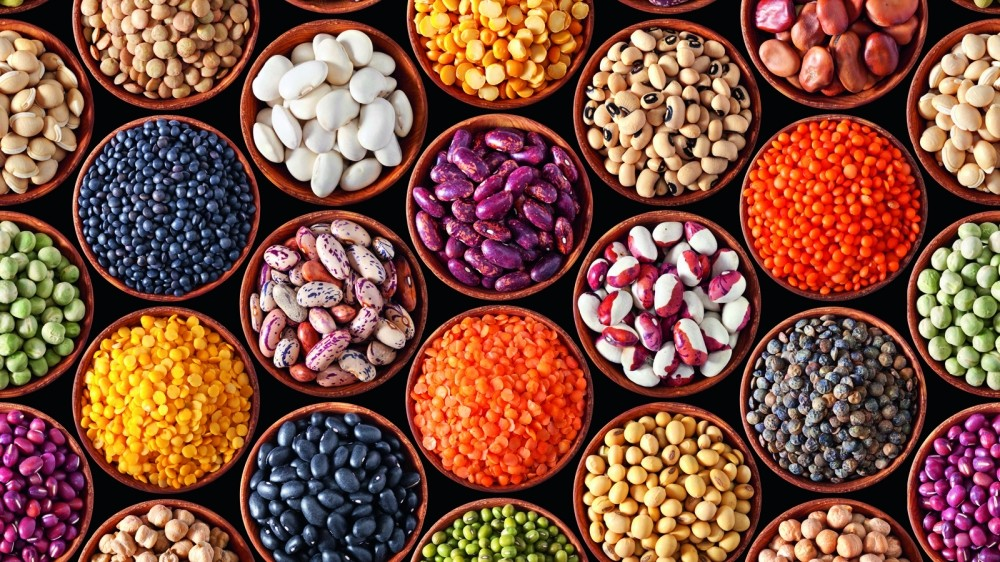 Beans and pulses are an excellent source of plant protein