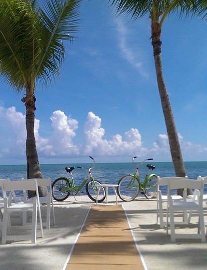 Garry Templeman's bikes