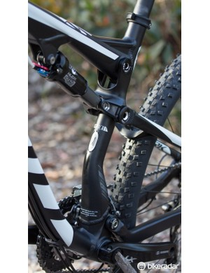 Fancy features - asymmetrical seatstays and chainstays join the one-piece rocker link for a solid linkage system