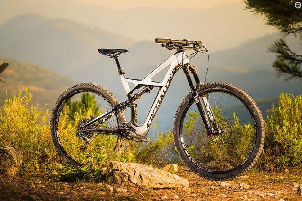 Familiar profile: The Enduro has a similar outline to the alloy and 650b models