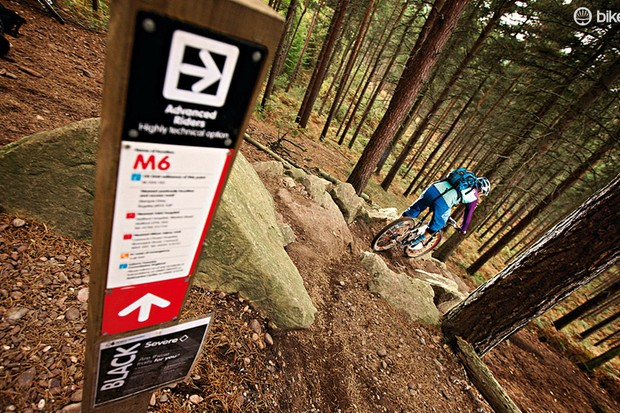 Cannock Chase trails will once again host the UK's biggest mountain bike demo day