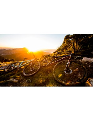 The Highball is now available in both 27.5in and 29in wheel sizes, as well as carbon and alloy frame options