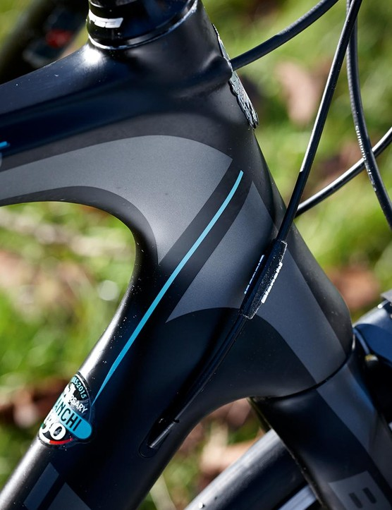 Just a few mm taller in the head-tube – Bianchi 'endurance' geometry