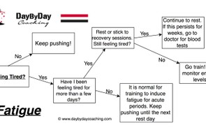 Flow chart for fatigue