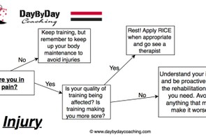 Flow chart for injury