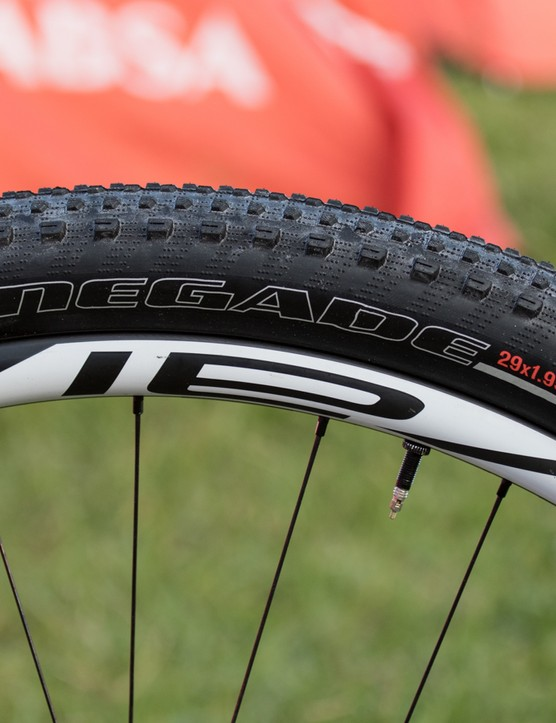 29 x 1.95in Specialized Renegade Control rubber for Sauser