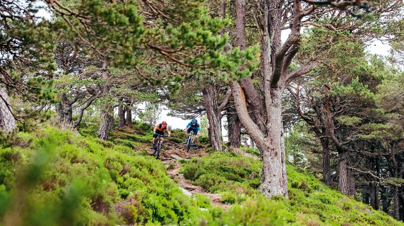 Read our guides and you'll soon be out there riding with confidence
