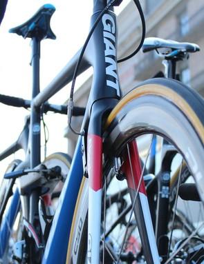 The Giant Propel with Shimano C50 wheels is a machine made for Scheldeprijs