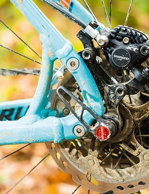 Replaceable dropouts mean you can go singlespeed. If you're weird
