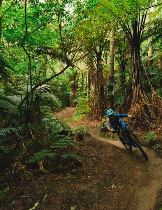 The lighter feel and playful precision handling mean women choosing a 150mm rig no longer have to learn to ride a burlier bike if this is the type of riding they want to do