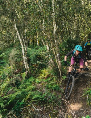 The Rhyme is a solid option for the rider who wants to do a bit of everything, or is panicked about meeting tight cut off times, or sacrificing all their favourite food groups, to be competitive at an enduro race