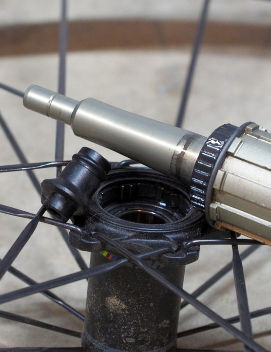 Modern hubs comprise a long list of separate parts - and every interface can creak. Pull it apart, clean and regrease all of the axle/end cap/bearing contact points, and then put it back together. Be careful with the driver mechanisms, though, as many require specific lubricants to work properly