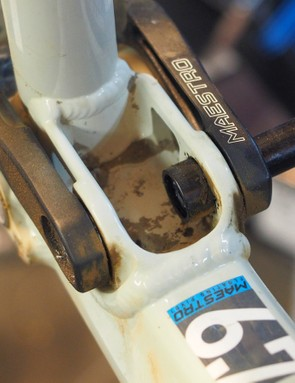 Suspension pivots are filled with lots of small parts, all of which can creak under load