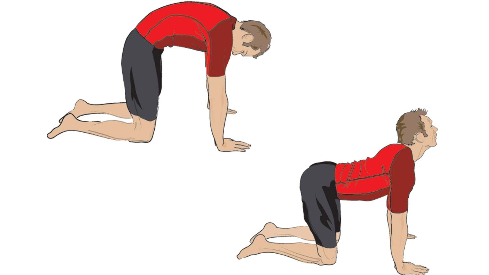 Get on all fours and curve your back upwards and downwards to perform the cat