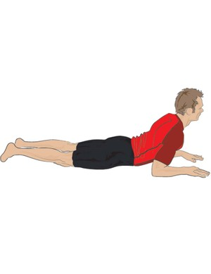 The low cobra move involes you lifting up your upper body while lying on your front