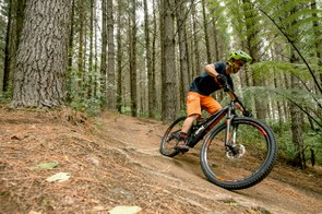 The rider's nerve and ability are the only things tempering the S-Works Stumpjumper's appetite for pace