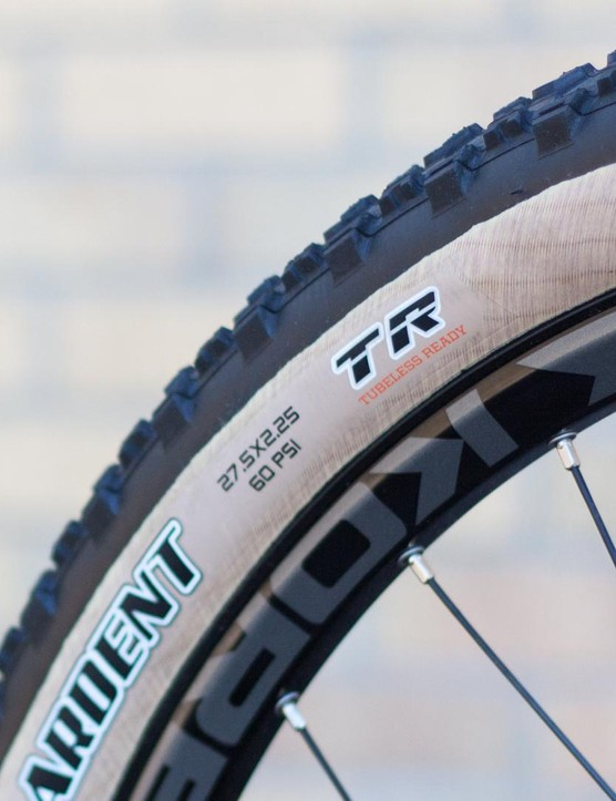 Limited edition tan wall Maxxis Ardent tyres will certainly split opinion, a brave move from Saracen