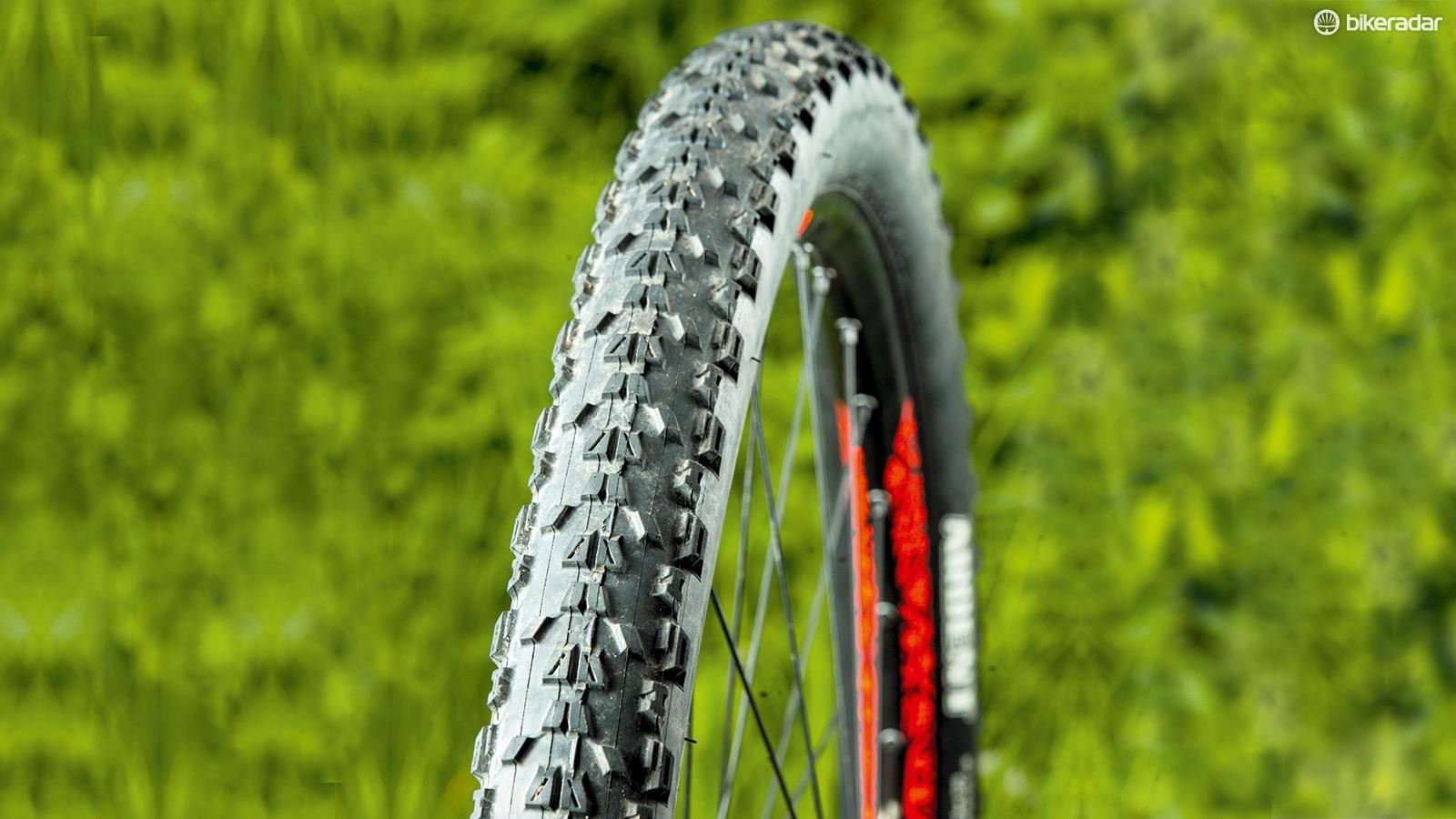 Maxxis Ardent EXO TR