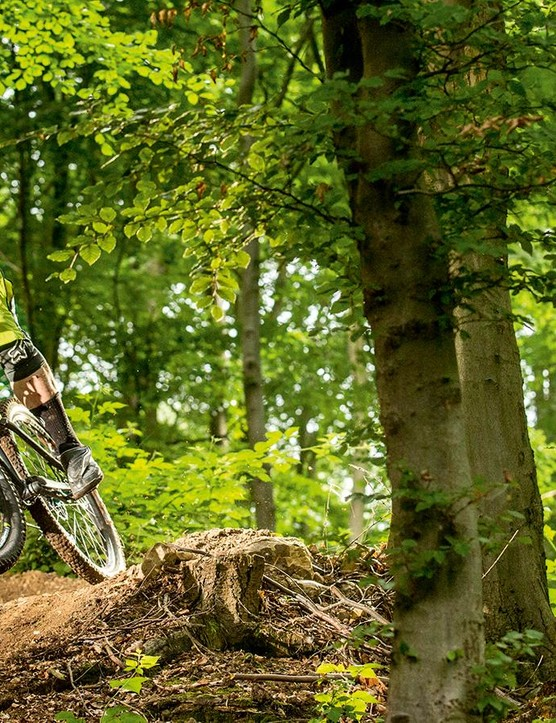 Whyte led the DH geometry trail revolution, but today's G-150S lacks an ounce of control compared with some of the competition