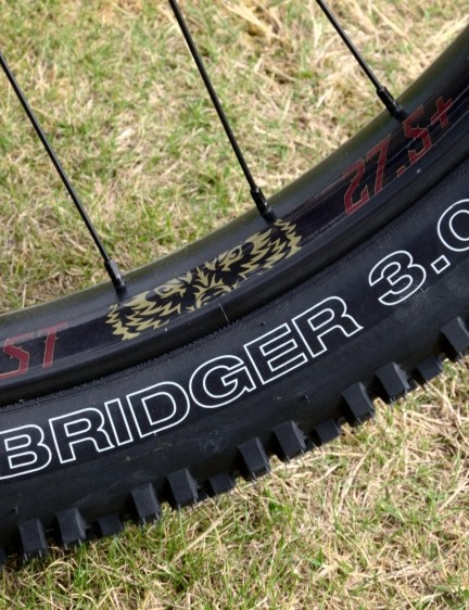 This Beast of the East 2 features Cannondale Beast rims and WTB Bridger three-inch tyres